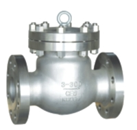 Picture of CF8M Flanged Swing Check Valve ANSI 300