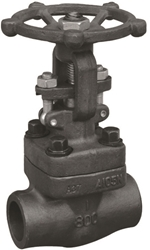 Picture of ANIX Forged Steel Globe Valve Threaded Class 800
